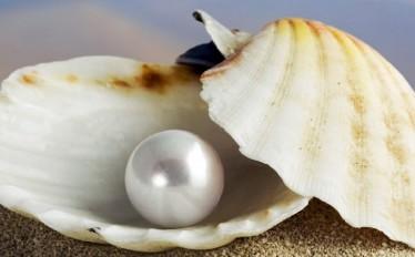 Pendientes perlas joyería Online Gloria Pardo Barcelona